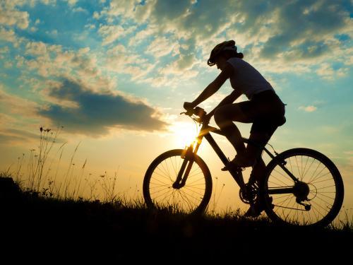 Biciklitúra